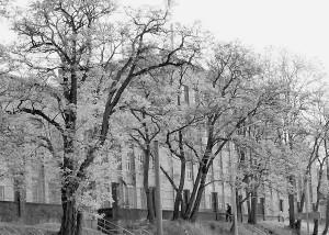 Stahlbau-Halle 2- Foto W. Ebert